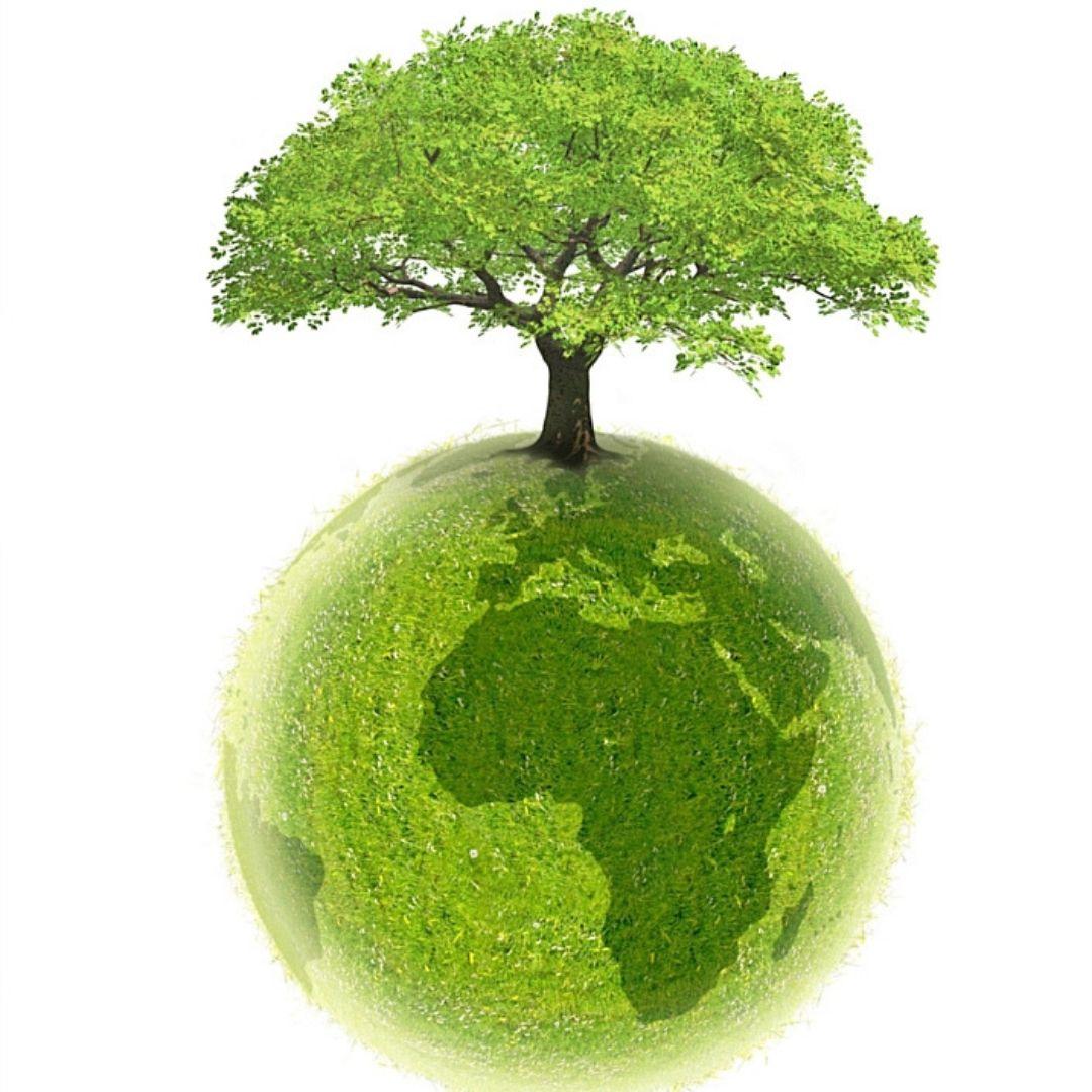 eco responsable evolutiv solutions